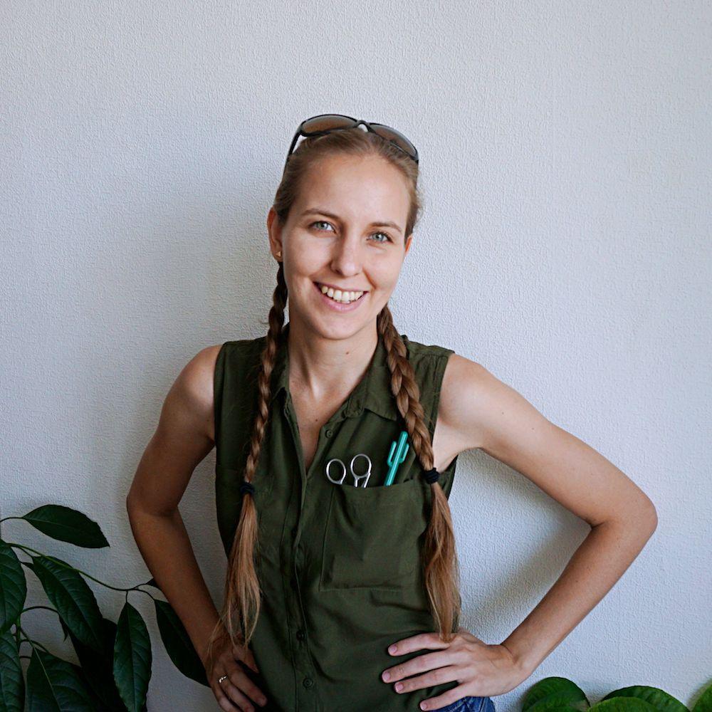 Edyta Tarnowska - blog DIY Origami Frog - proste projekty zrób to sam