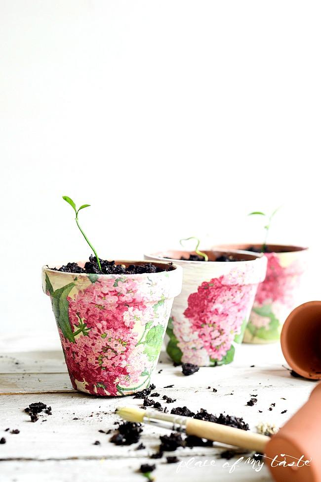 Jak ozdobić doniczkę ceramiczną? Pomysły i inspiracje