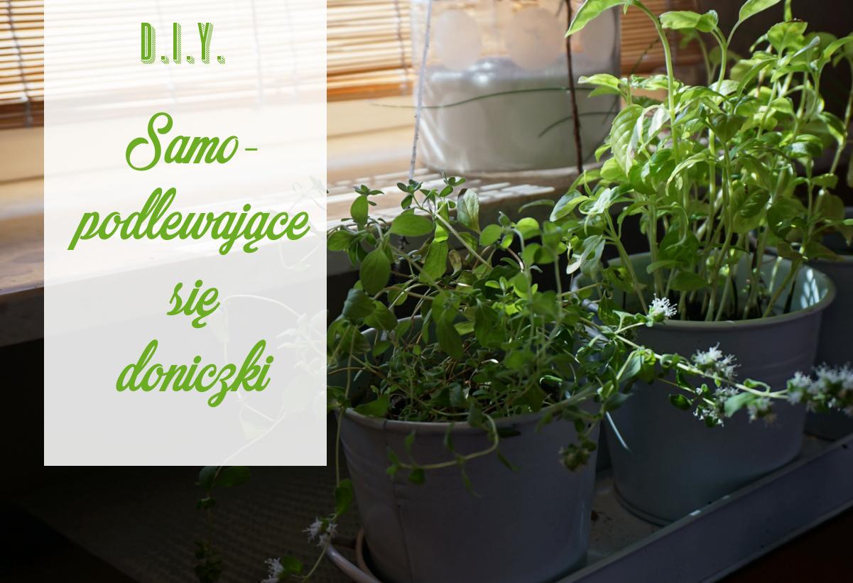 Samopodlewające się doniczki, czyli jak nie zasuszyć roślin podczas wyjazdu