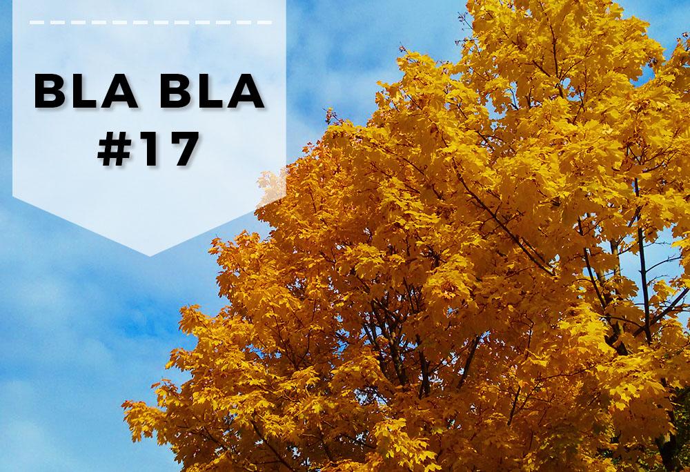 Blabla 17 - Podsumowanie wyzwania, bieg i jesienne spacery
