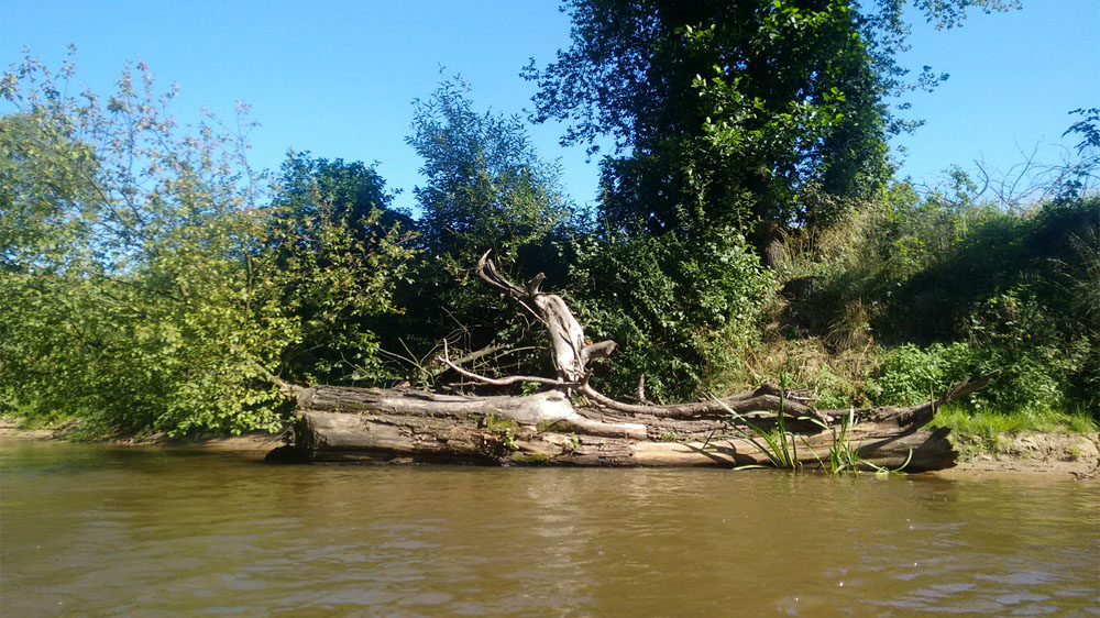 Aktywny weekend - spływ kajakowy Mała Panew
