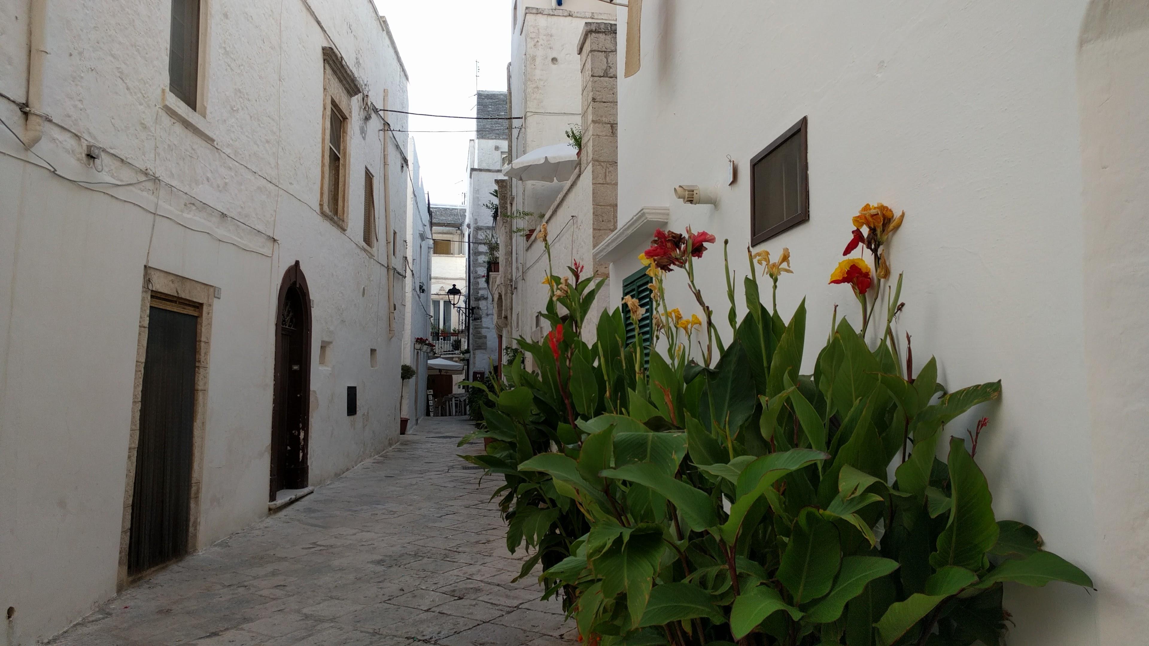 Zwiedzanie Apulii - Locorotondo