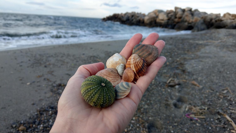 DIY Kreta poza sezonem - Plaża w Platanias